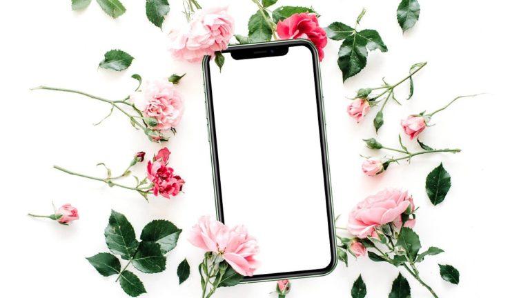 Flowers Mobile Phone Roses  - Hollanddesign / Pixabay